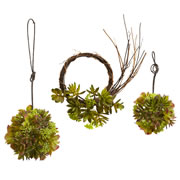 Mixed Succulent Wreath & Spheres (Set of 3)