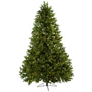 7.5' Royal Grand Christmas Tree w/Clear Lights