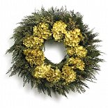 "20"" Golden Hydrangea Cedar Wreath"