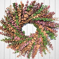 Key West Eucalyptus Wreath