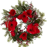 Amaryllis and Berry Wreath