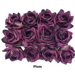 plum-roses