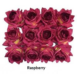 raspberry-roses