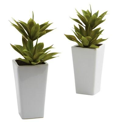 Double Mini Agave w/Planter (Set of 2)