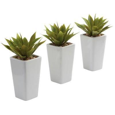 Mini Agave w/ Planter (Set of 3) White