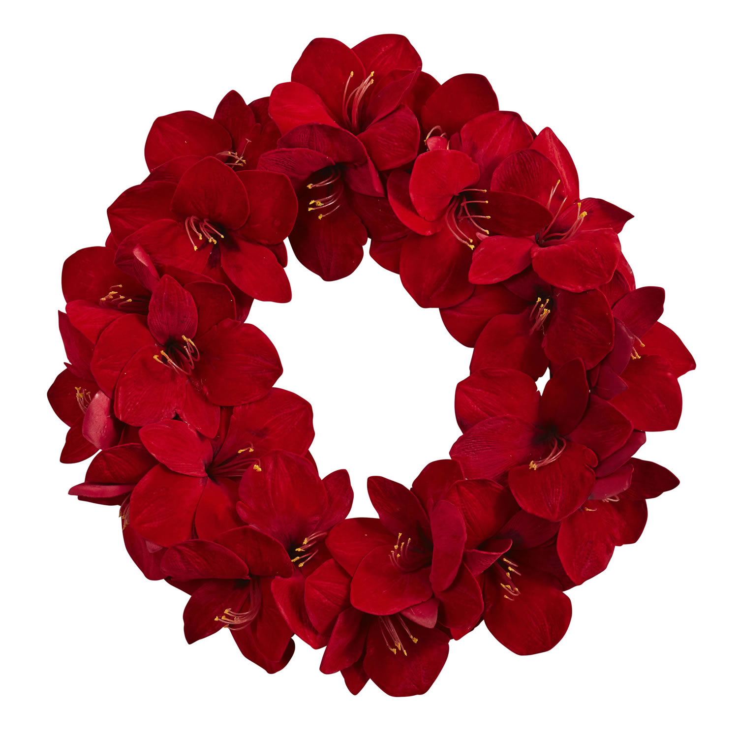 Radiant Amaryllis Wreath